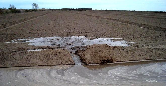 Datos de la humedad del suelo durante m s de 30 a os - Quitar humedad del ambiente ...