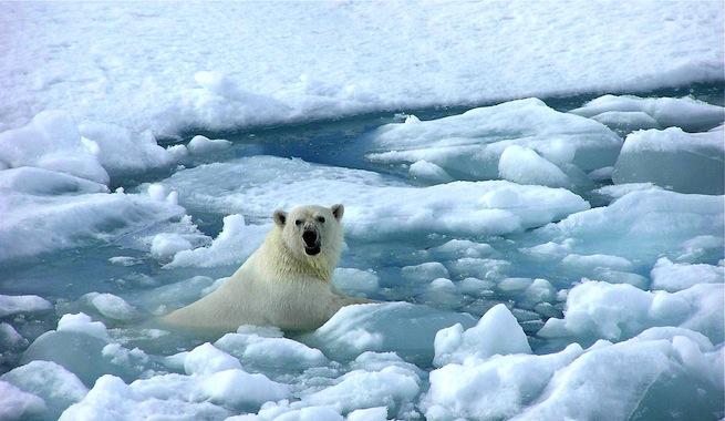 Denuncias Calentamiento-global-cambia-vida-de-personas